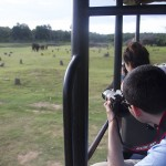Students snap away at elephants in Nargahole National Park. (Photo: Rick Ricioppo)